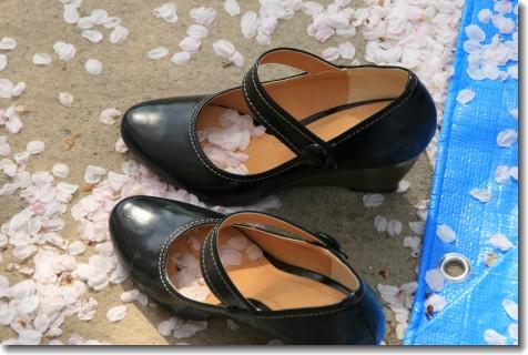 pétales de sakura dans chaussures